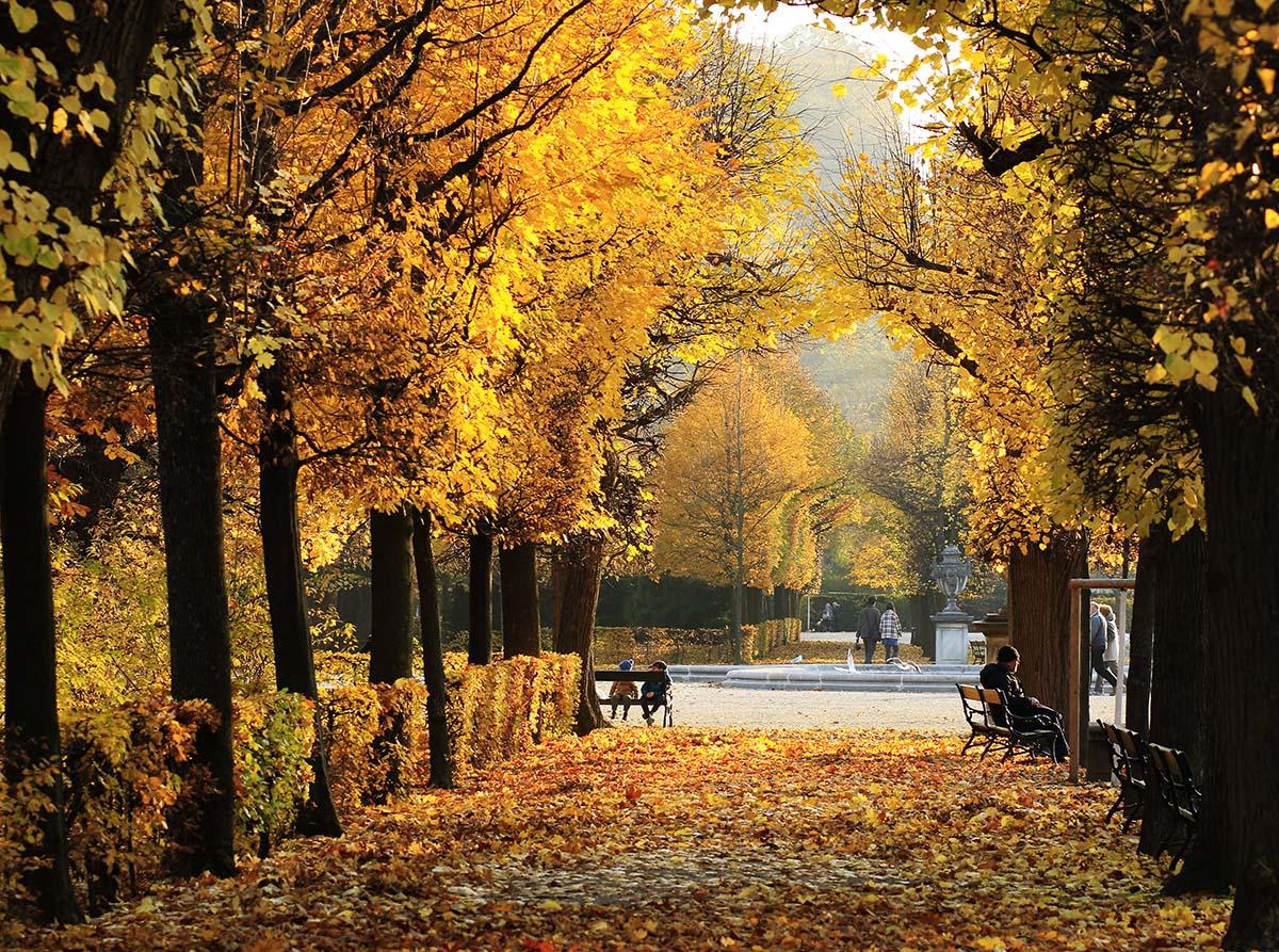 Autumn in Schönbrunn 2015 - Vienna Insider